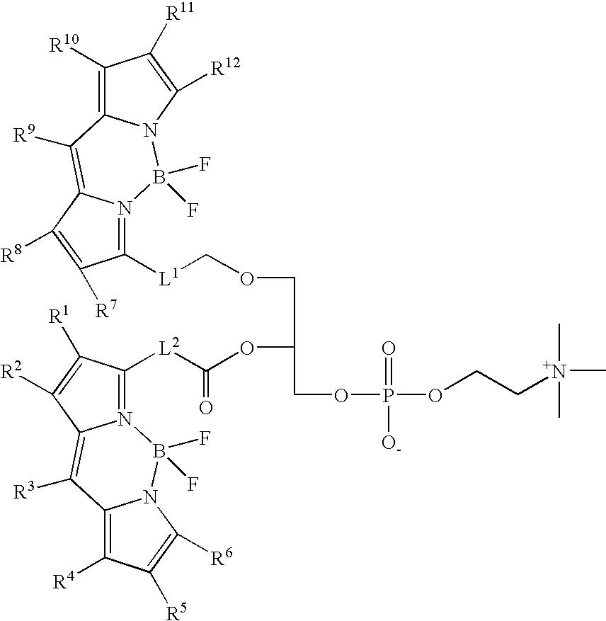 Figure US08513451-20130820-C00029
