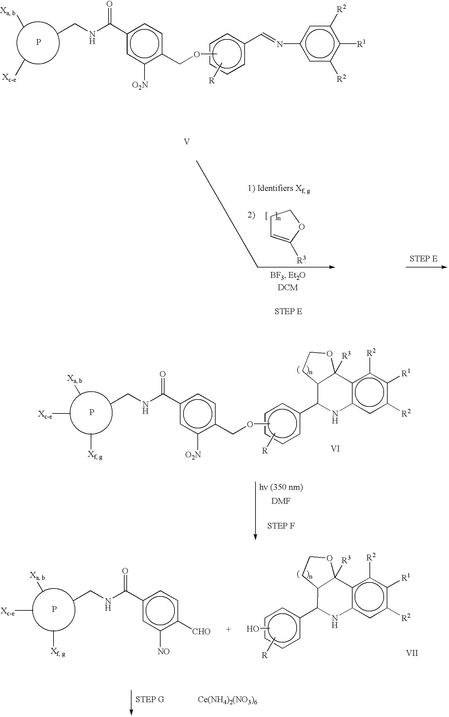 Figure US06936477-20050830-C00040