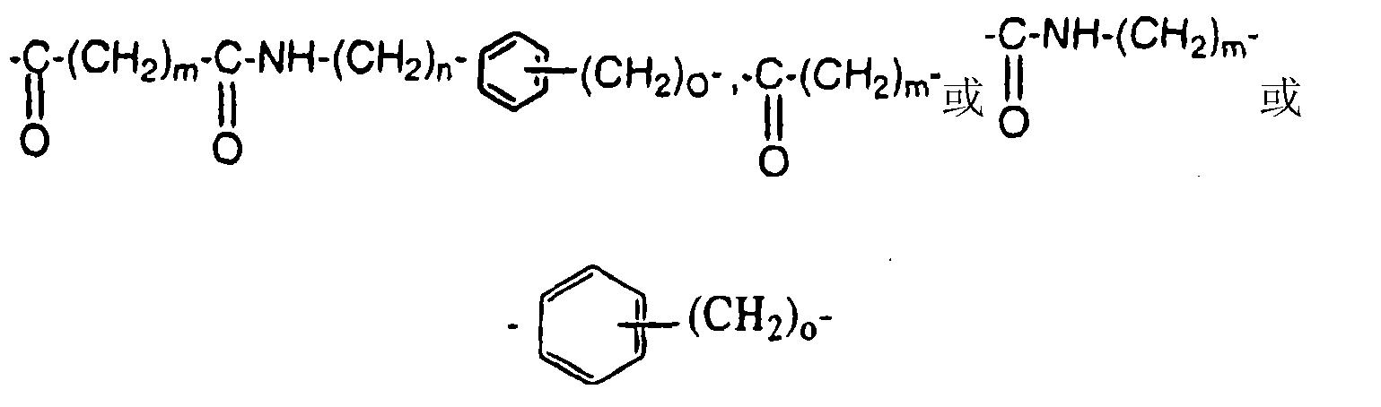 Figure CN101019024BD00101