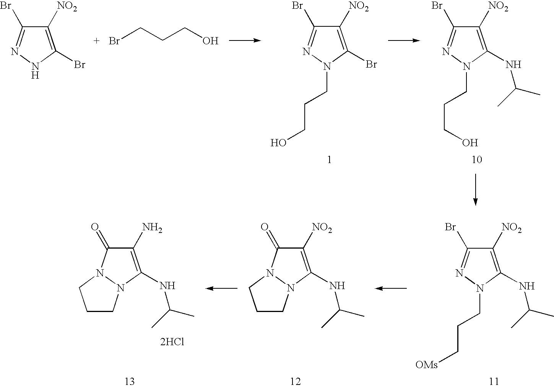 Figure US07488356-20090210-C00047