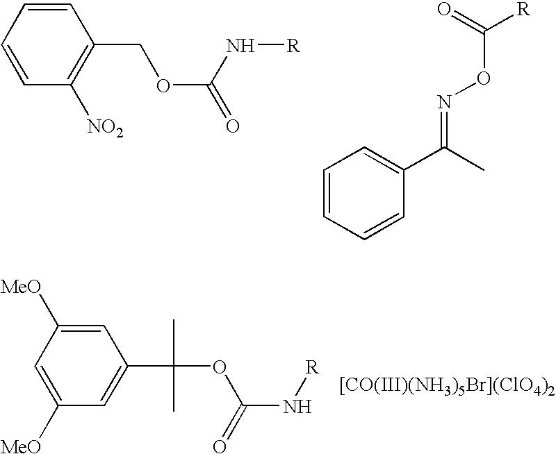 Figure US20040224257A1-20041111-C00013