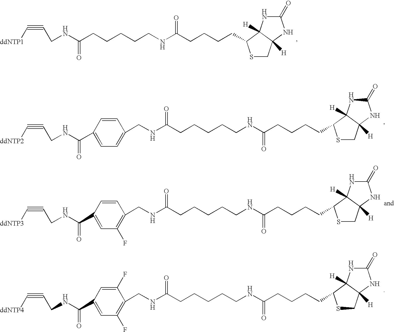 Figure US20030027140A1-20030206-C00018