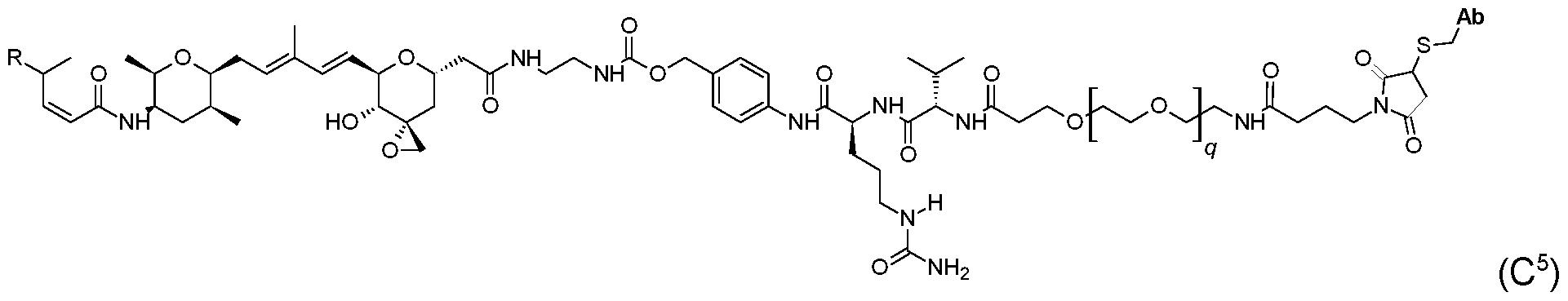 Figure imgf000047_0006