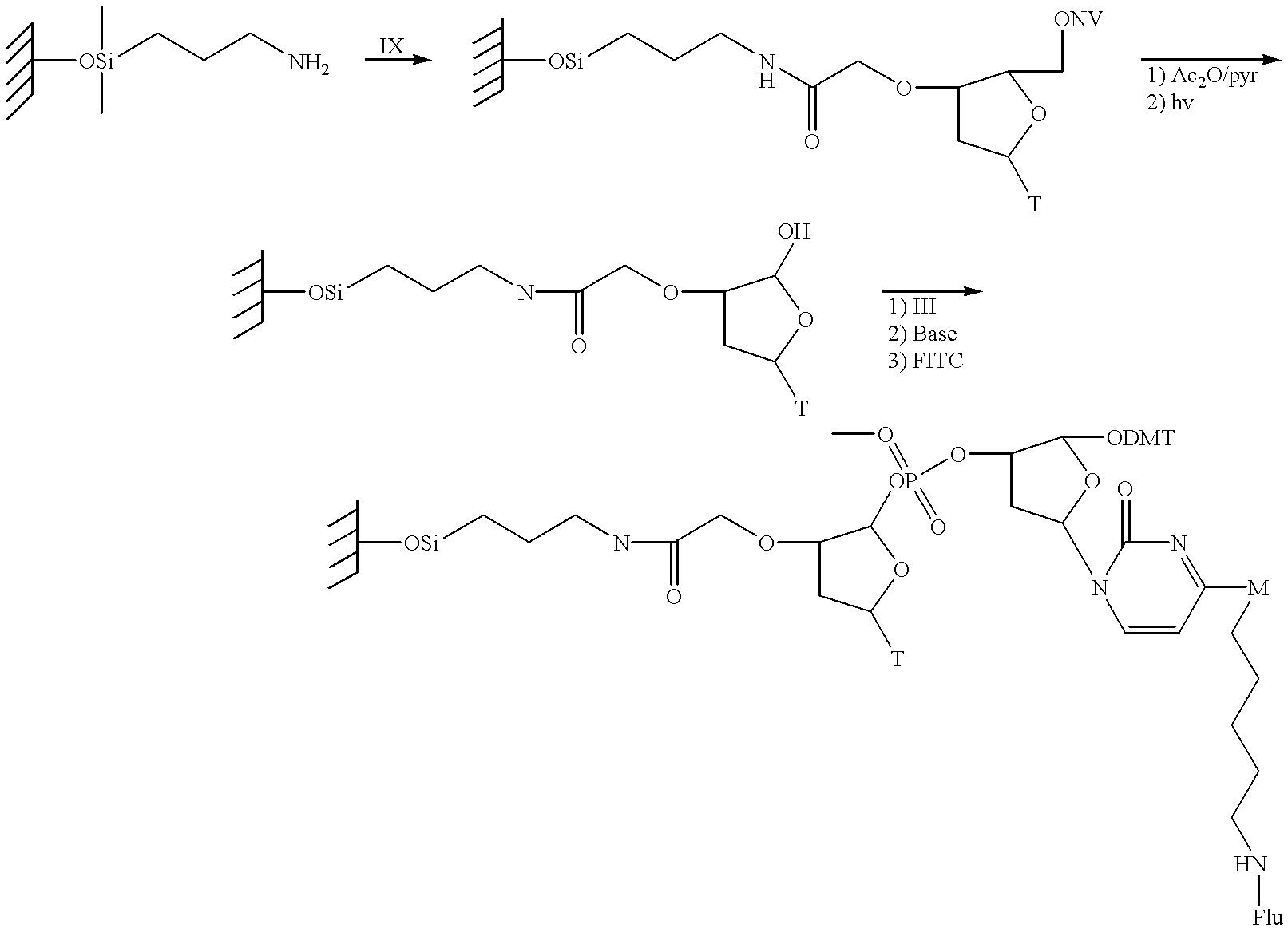 Figure US06416952-20020709-C00038