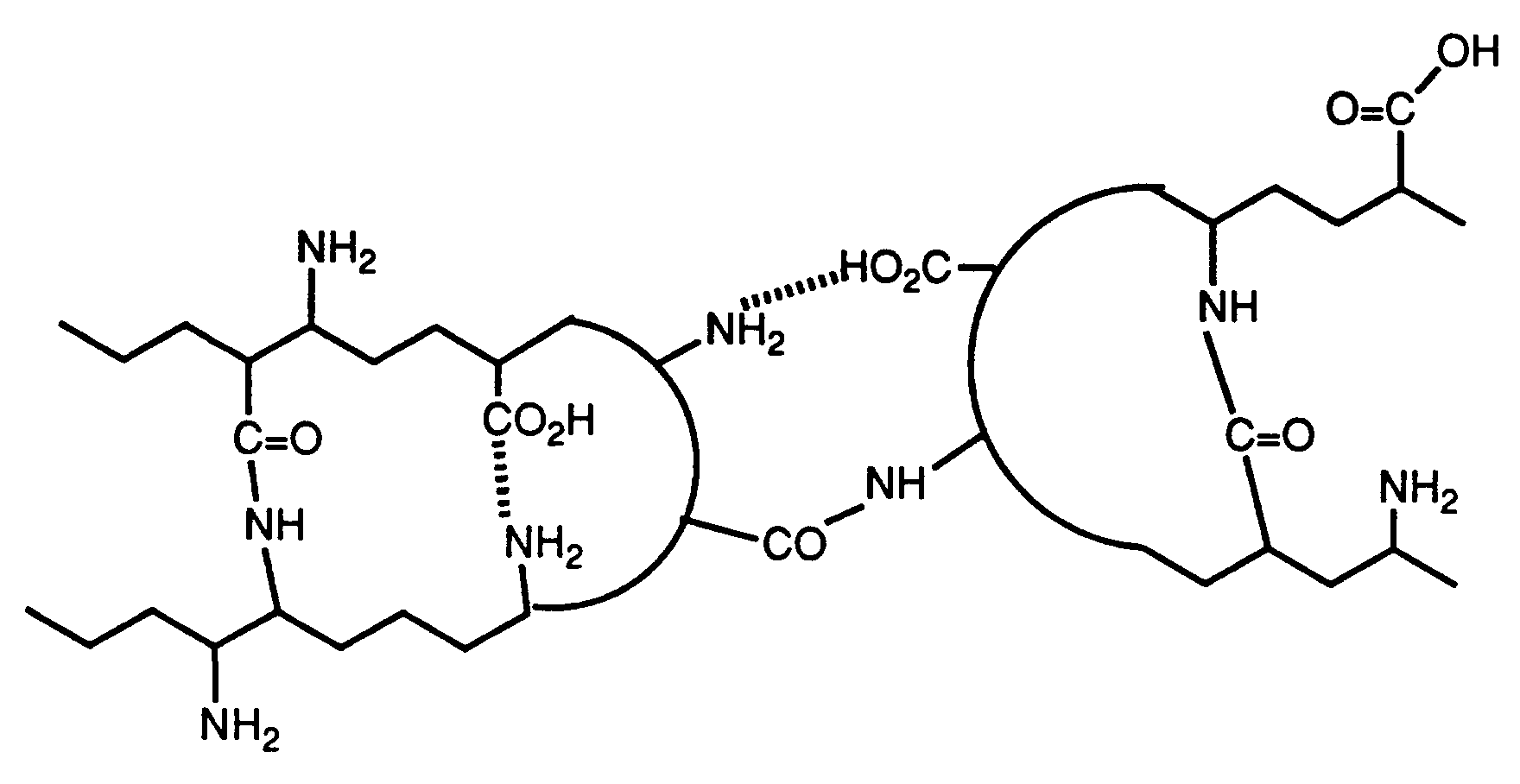 EP0576911A2 - In situ modification of Gelatin amine groups