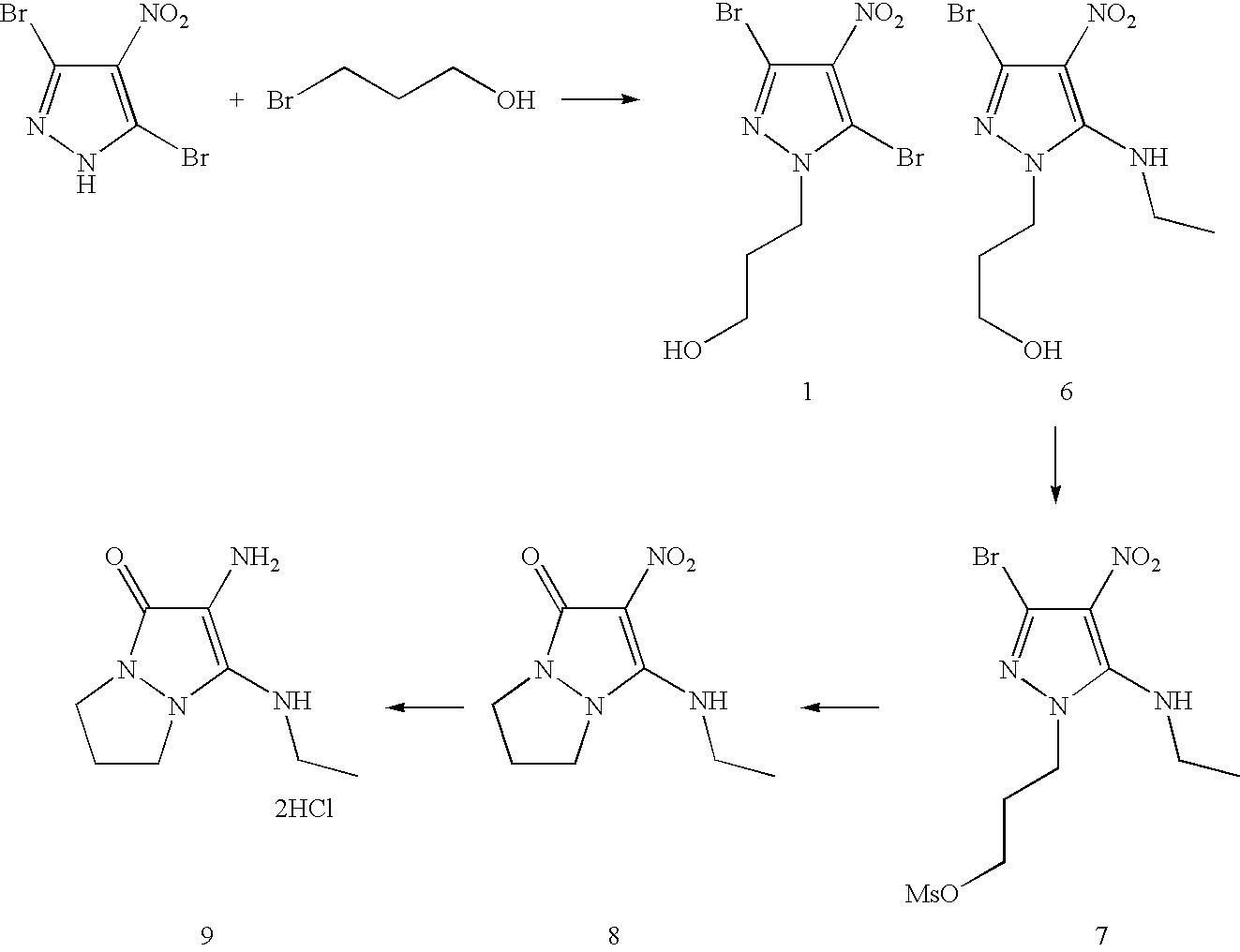 Figure US07488356-20090210-C00046