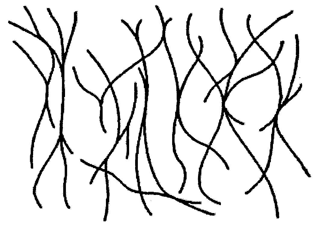 Wo2009134816a9