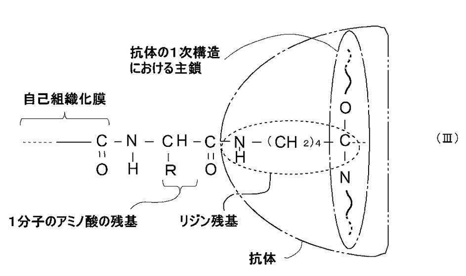Figure JPOXMLDOC01-appb-C000010