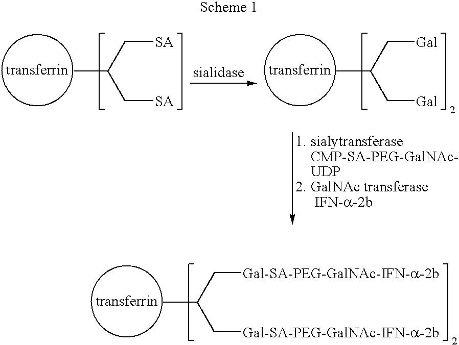 Figure US20080242846A1-20081002-C00010