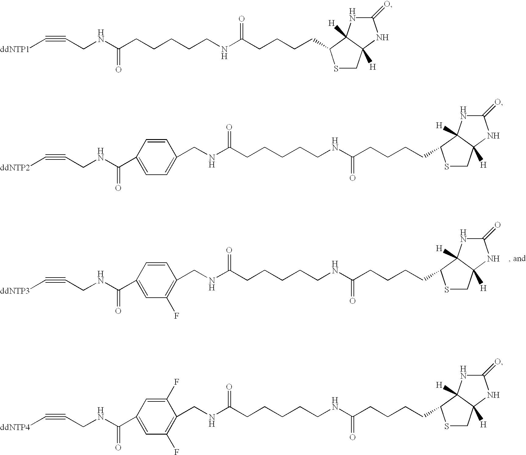 Figure US20030027140A1-20030206-C00002