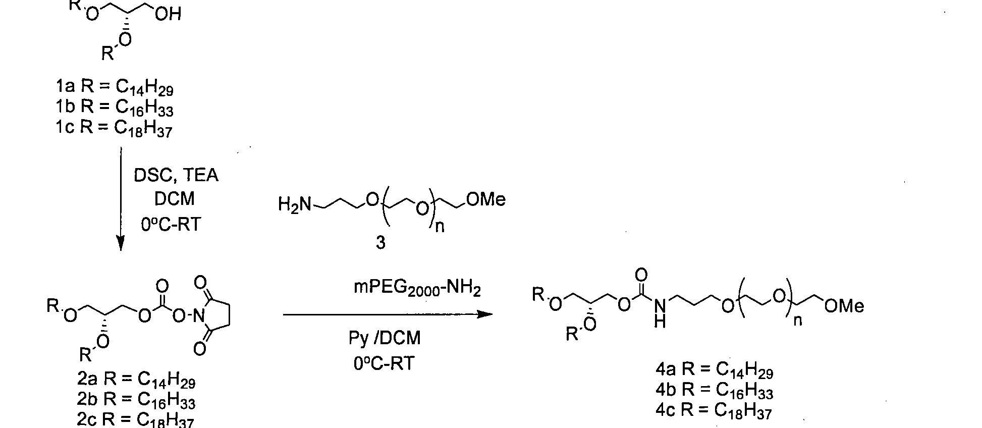 Figure CN101616677BD00981