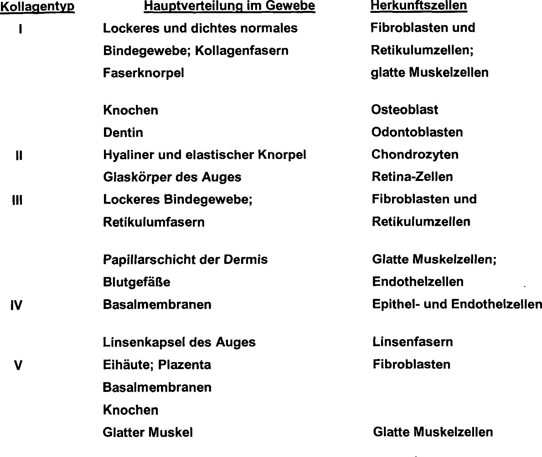 Groß Muskelgewebe Bilder - Anatomie Von Menschlichen Körperbildern ...