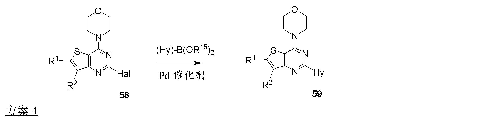 Figure CN102369011AD00423