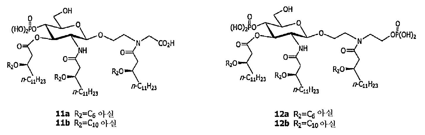 Figure 112005036305208-pct00004