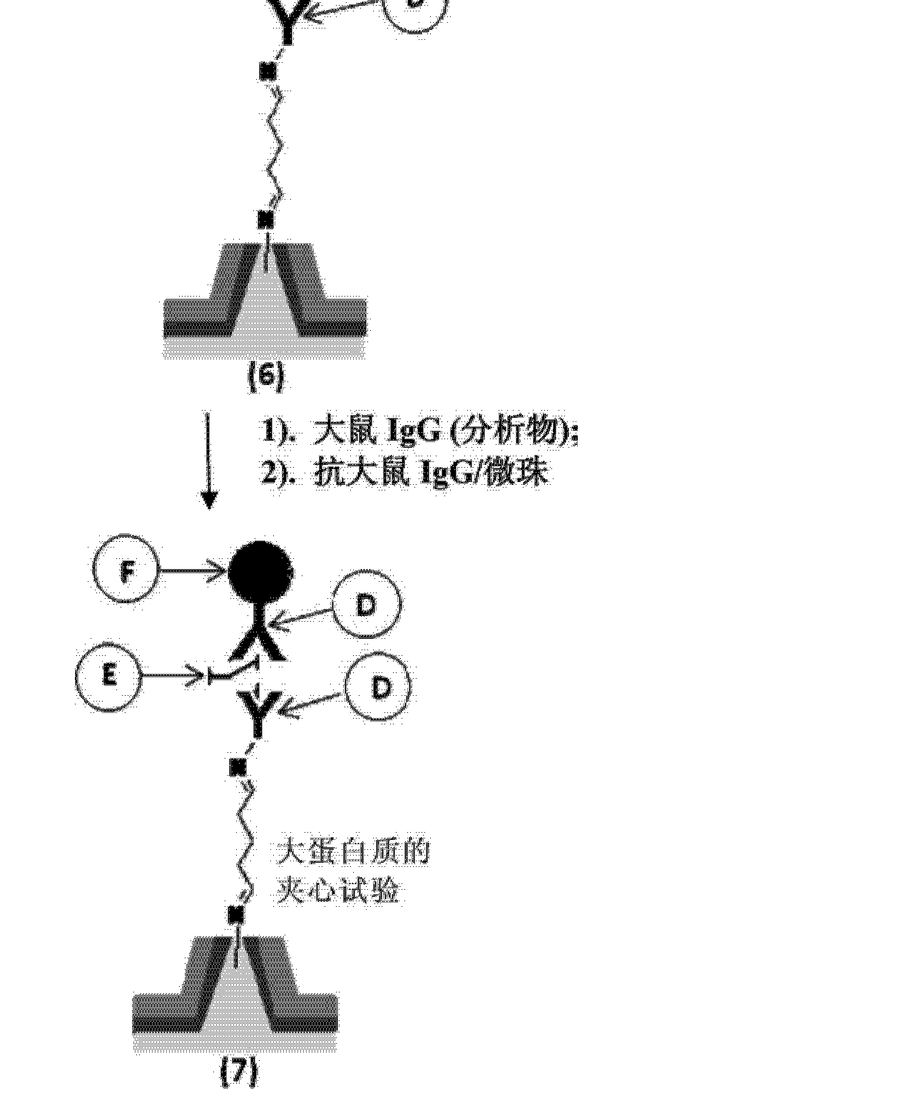 CN102971629A - Microarrays - Google Patents