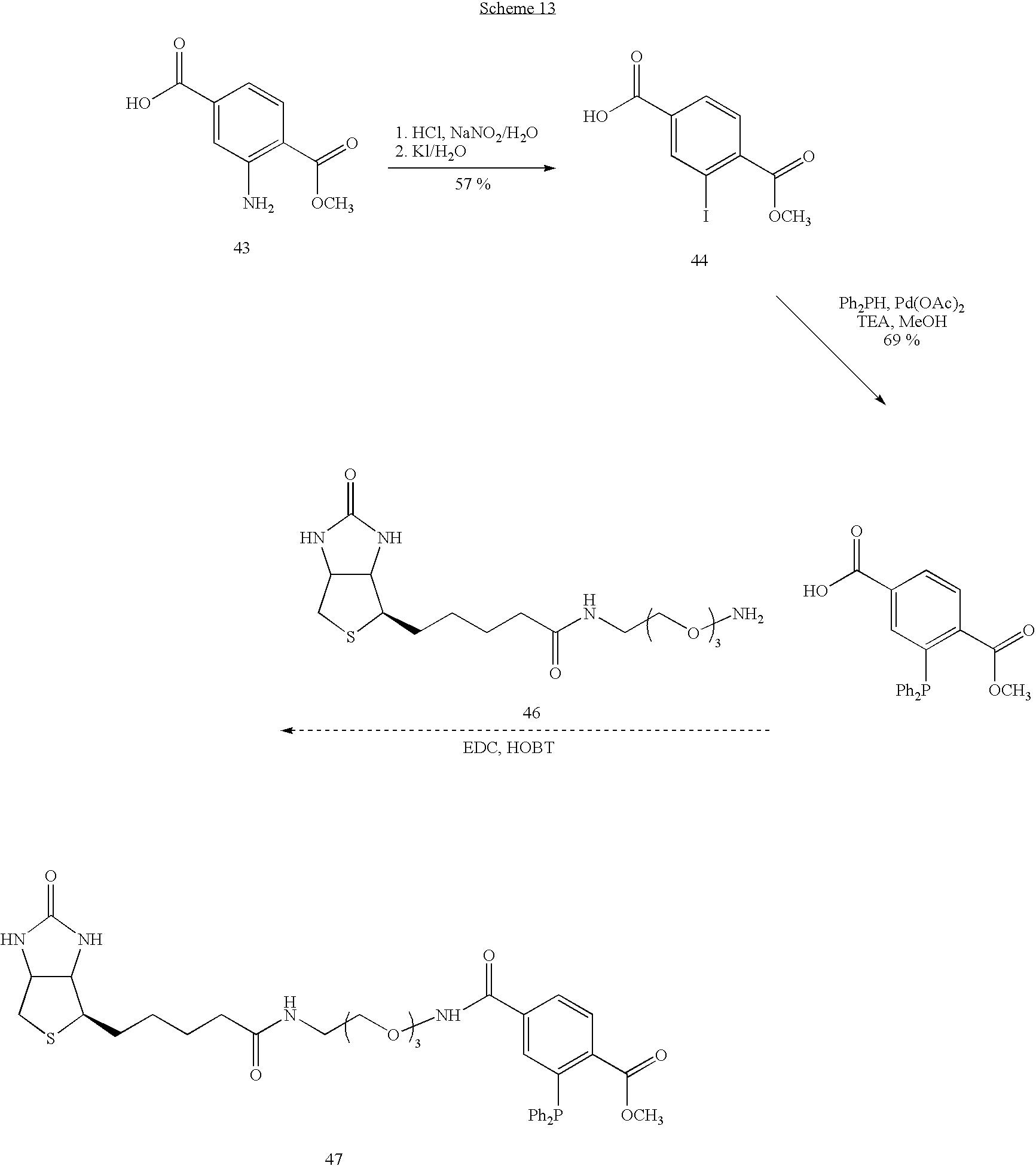 Figure US20060276658A1-20061207-C00038