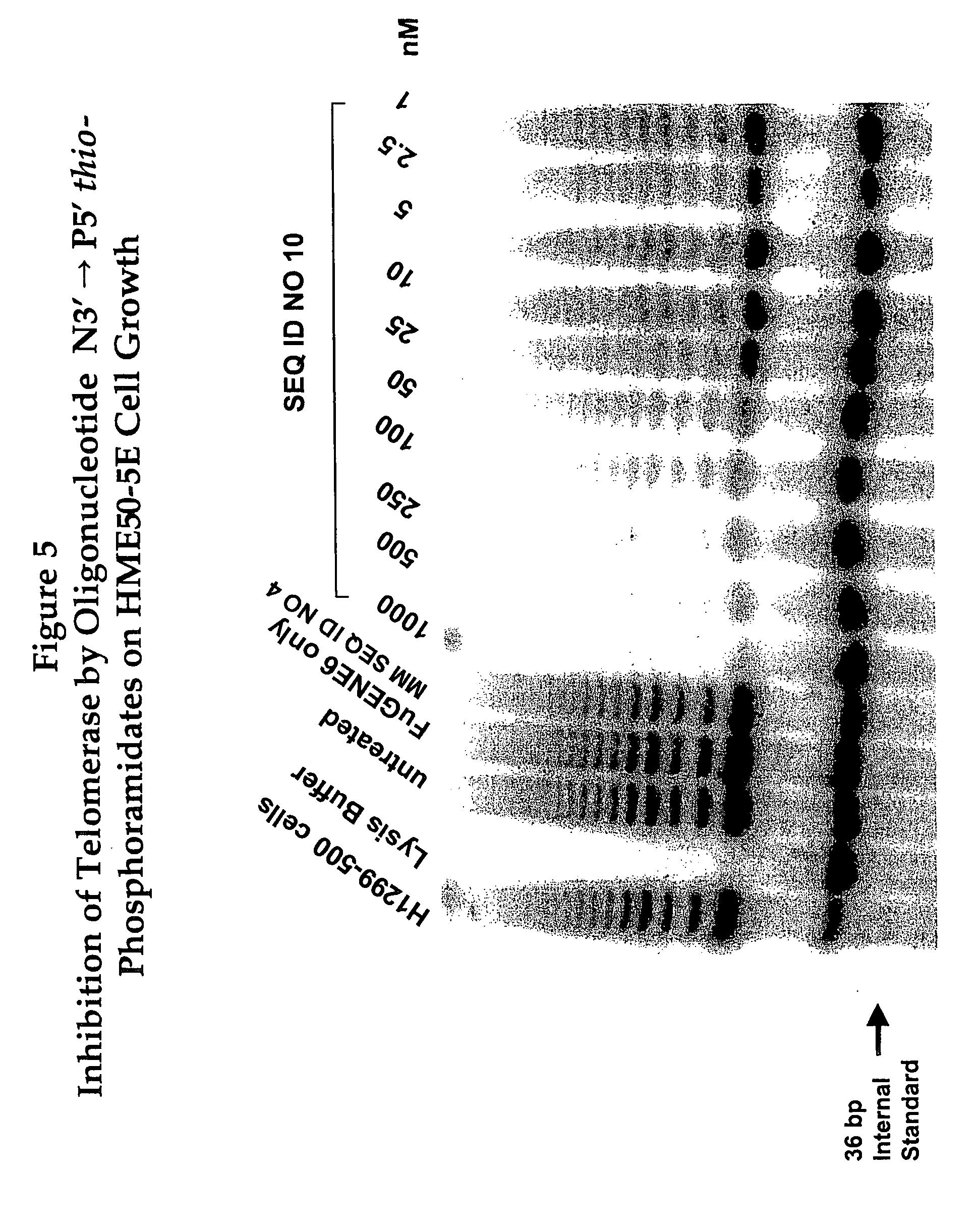 US20050049408A1 - Oligonucleotide N3'->P5