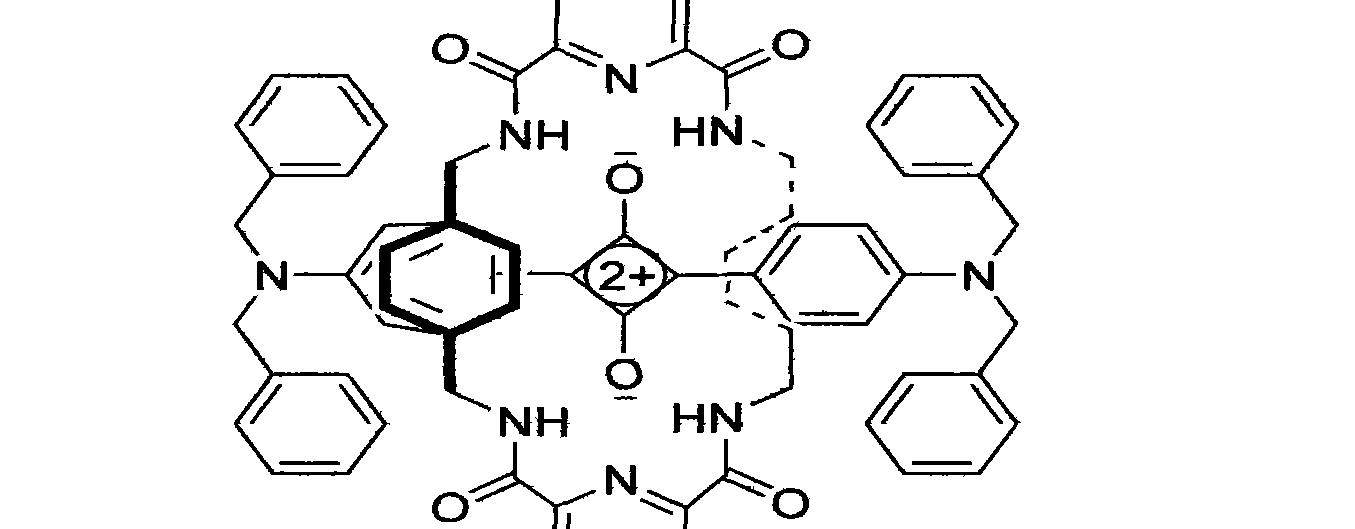 Figure CN101655460BD00051