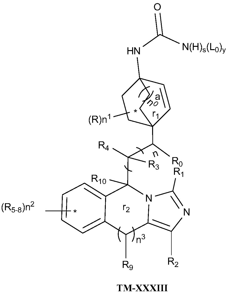 Figure PCTCN2017084604-appb-000069