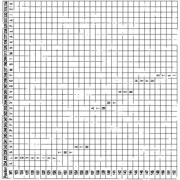 Figure 112005016313609-pct00086