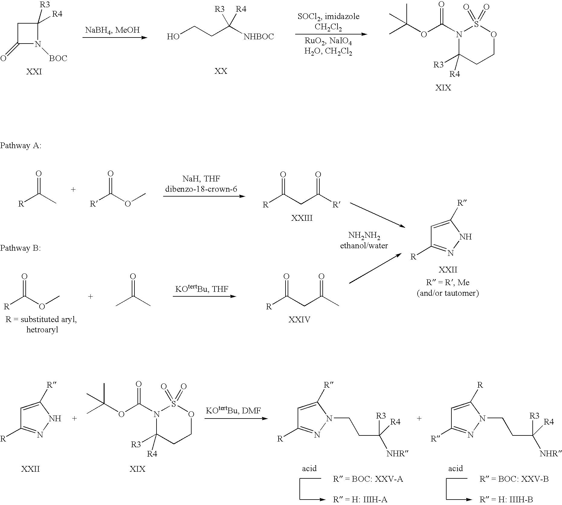 Figure US06861440-20050301-C00031