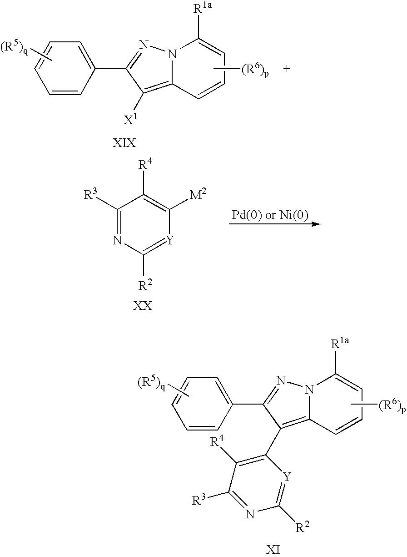 Figure US07034030-20060425-C00040