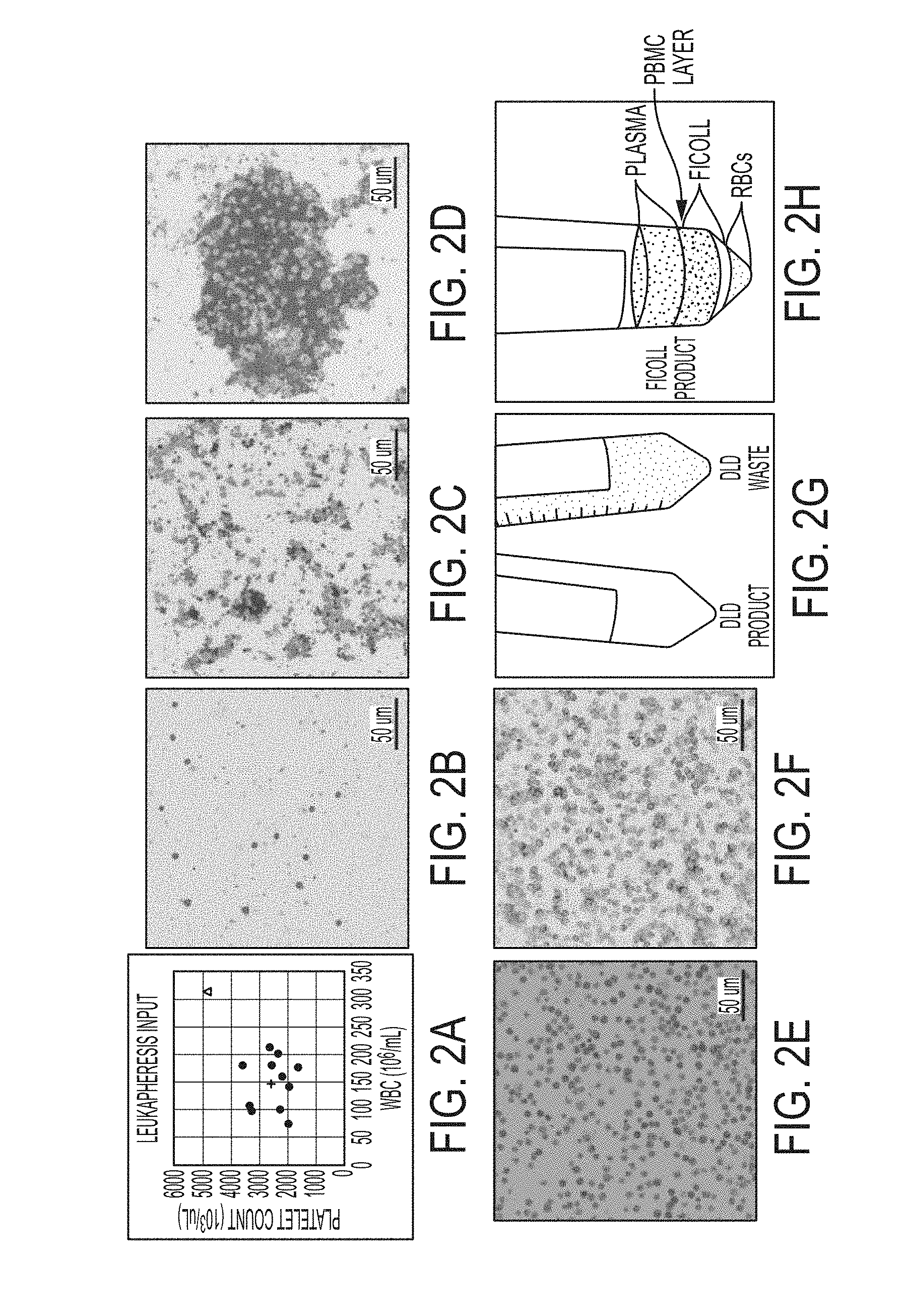 Patent Blue E131 Black P//N E151 Waste Food Dye Various Sizes
