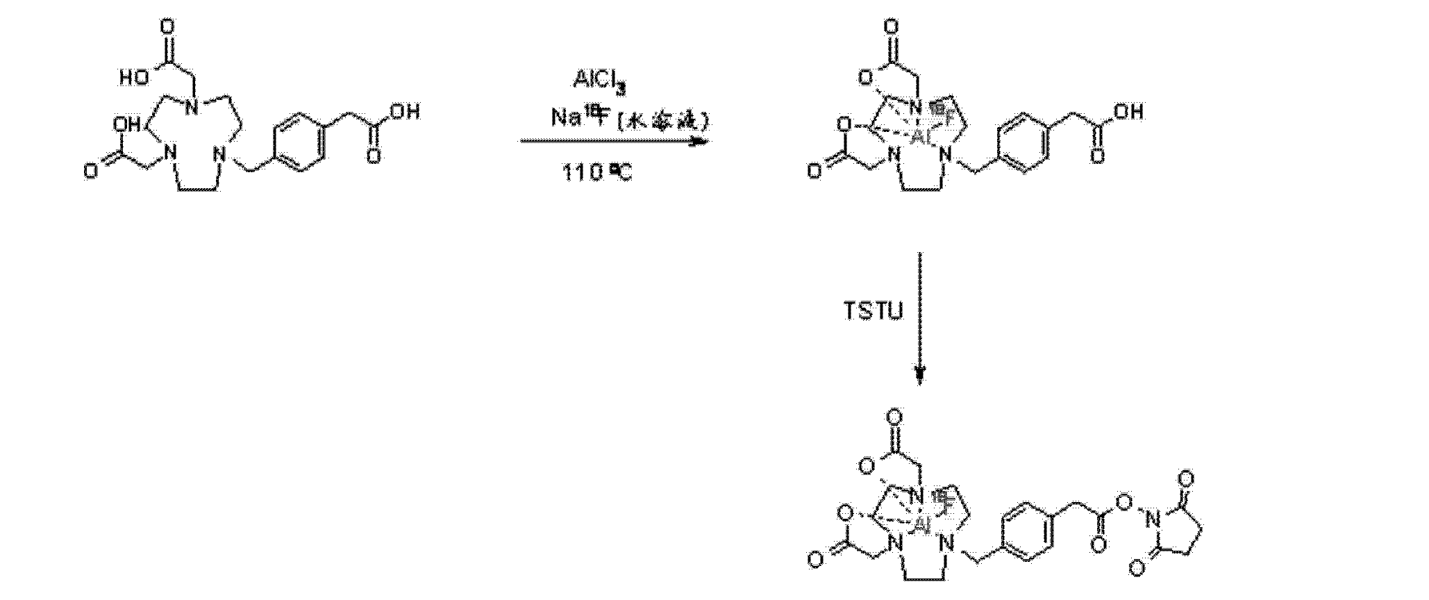 Cn103370063a Methods And Compositions For Improved F 18 Labeling 1100 Parts Manual Click Details Remington 11 87 Diagram Of Proteins Peptides Other Molecules Google Patents
