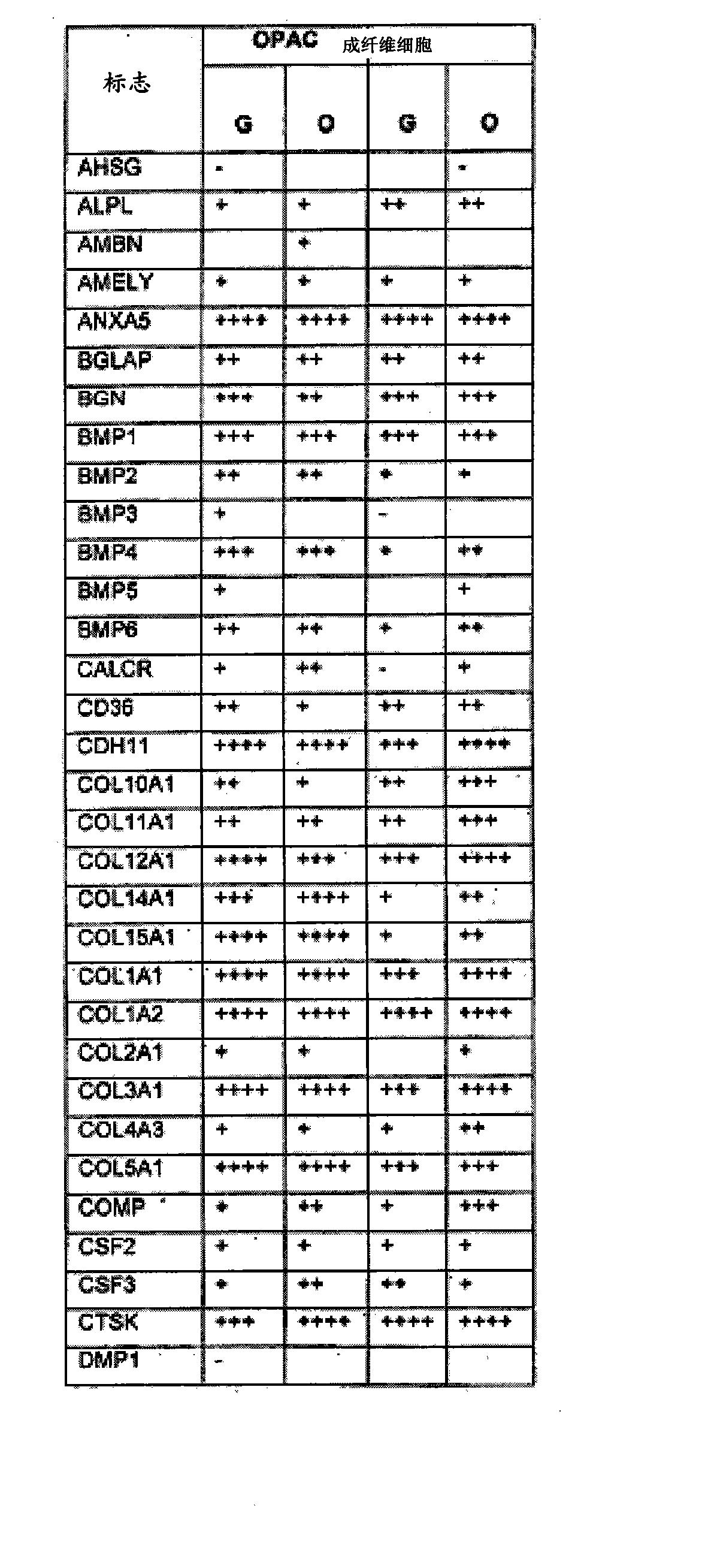Figure CN102176919AD00611