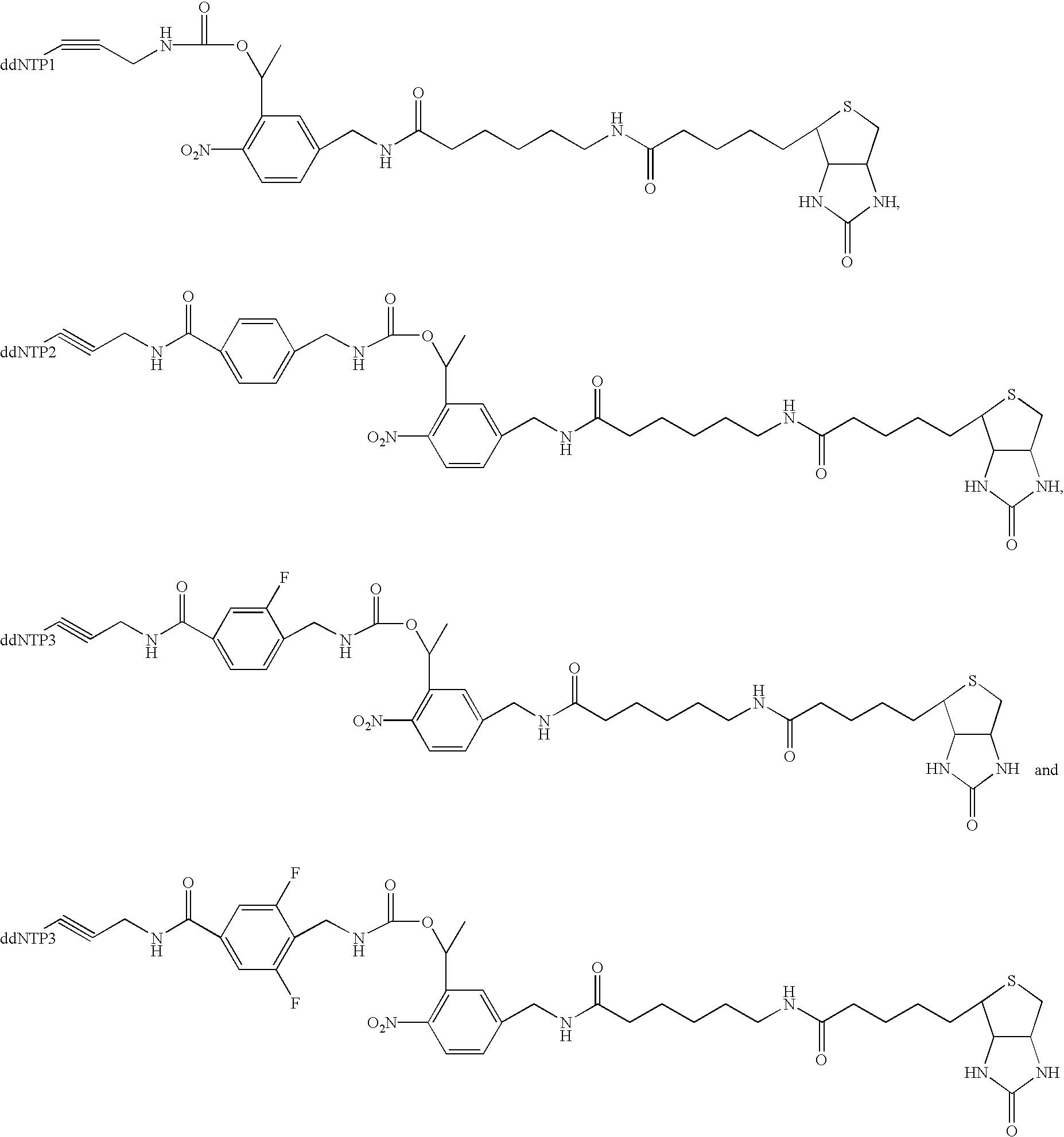 Figure US20030027140A1-20030206-C00020