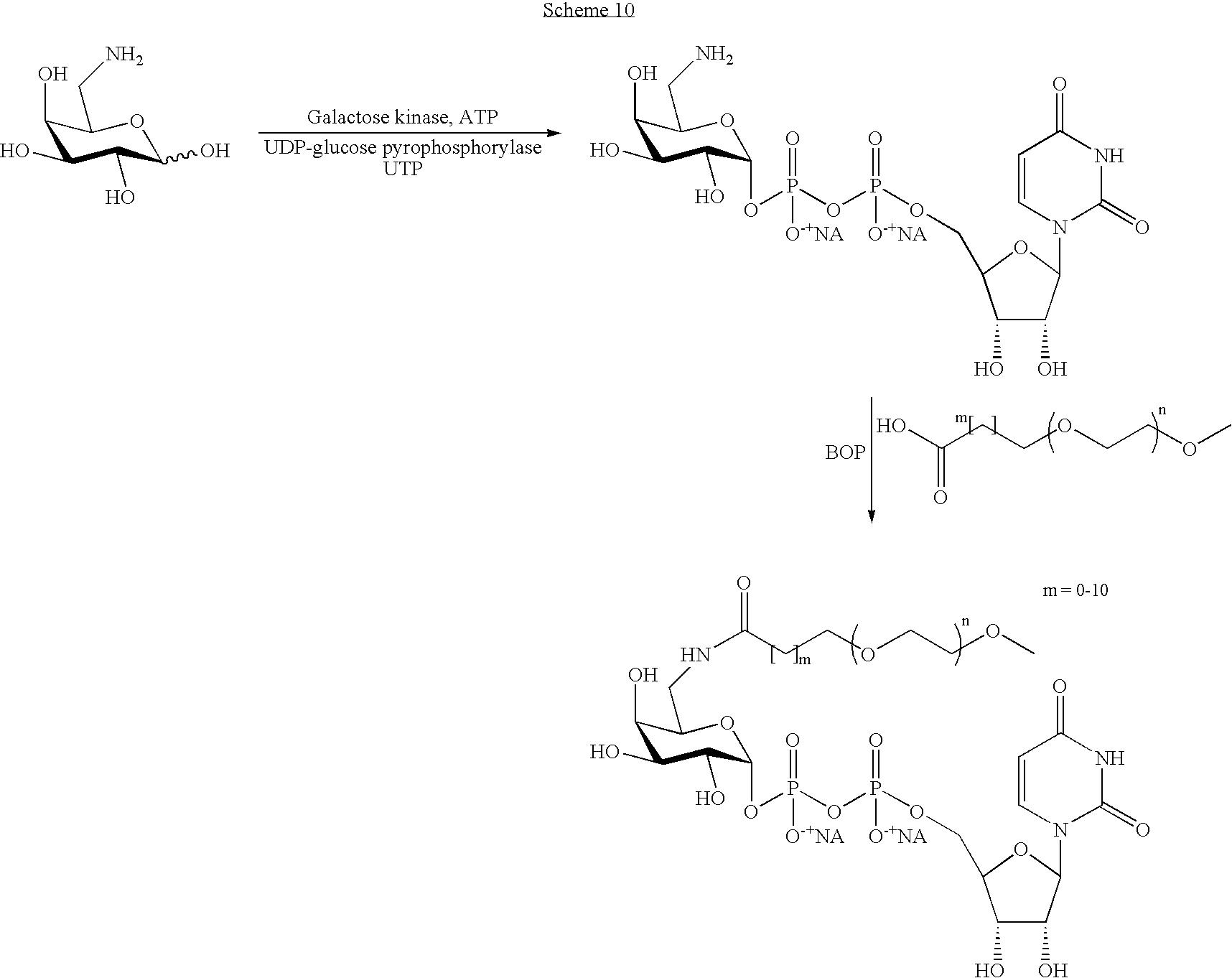 Figure US07439043-20081021-C00102