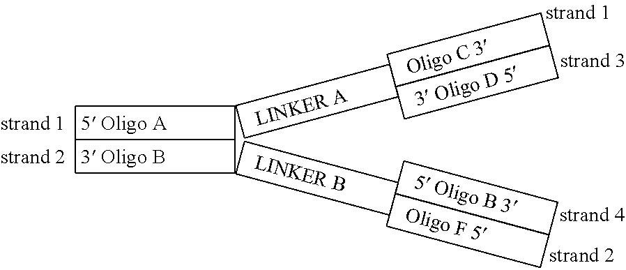 Figure US08362229-20130129-C00002