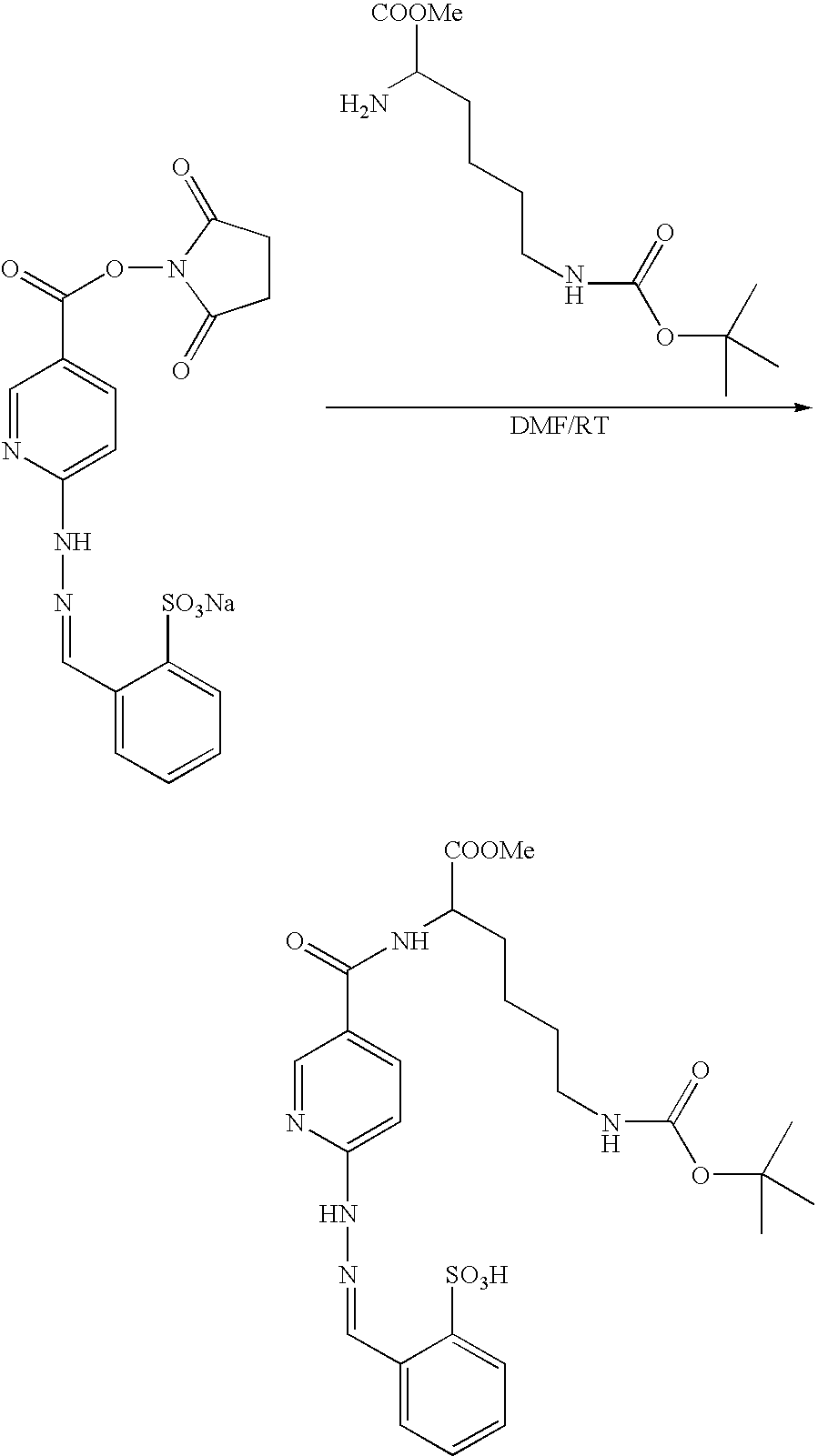 Figure US07317104-20080108-C00018