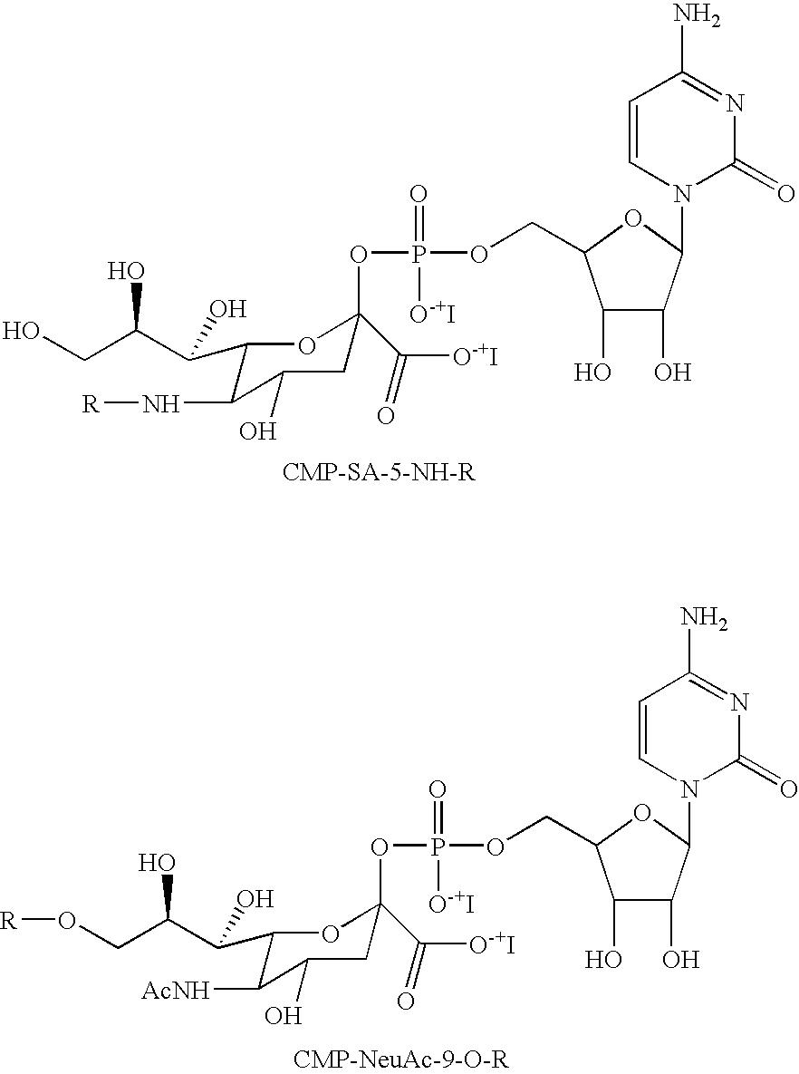 Figure US07439043-20081021-C00095