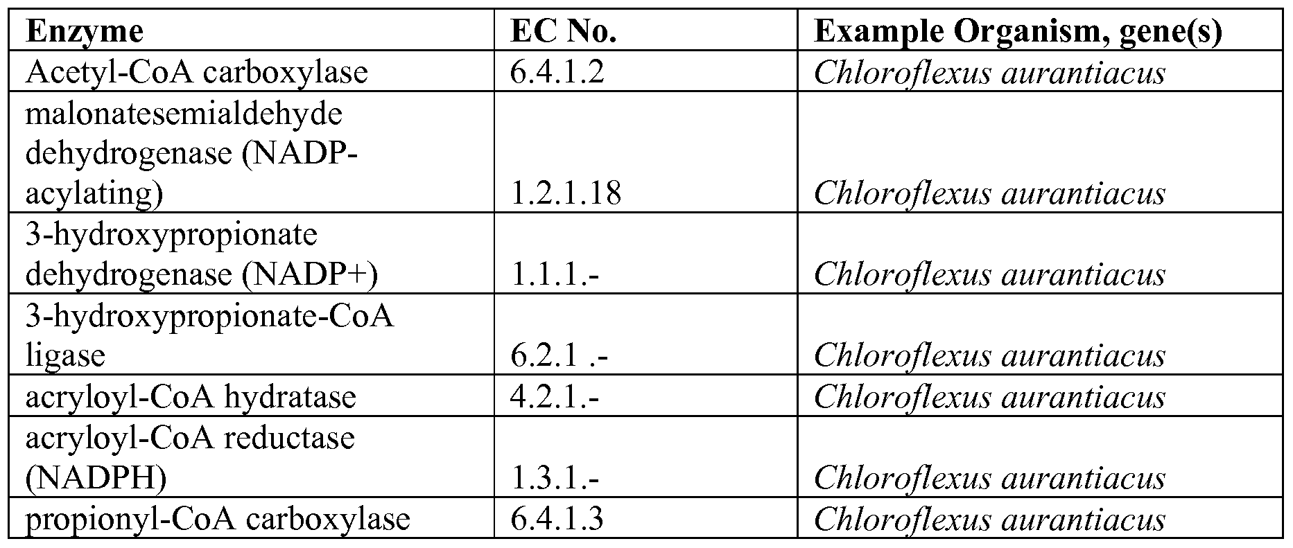 WO2009111513A1 - Engineered co2 fixing microorganisms producing