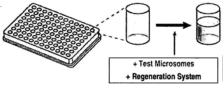 Figure imgf000061_0002