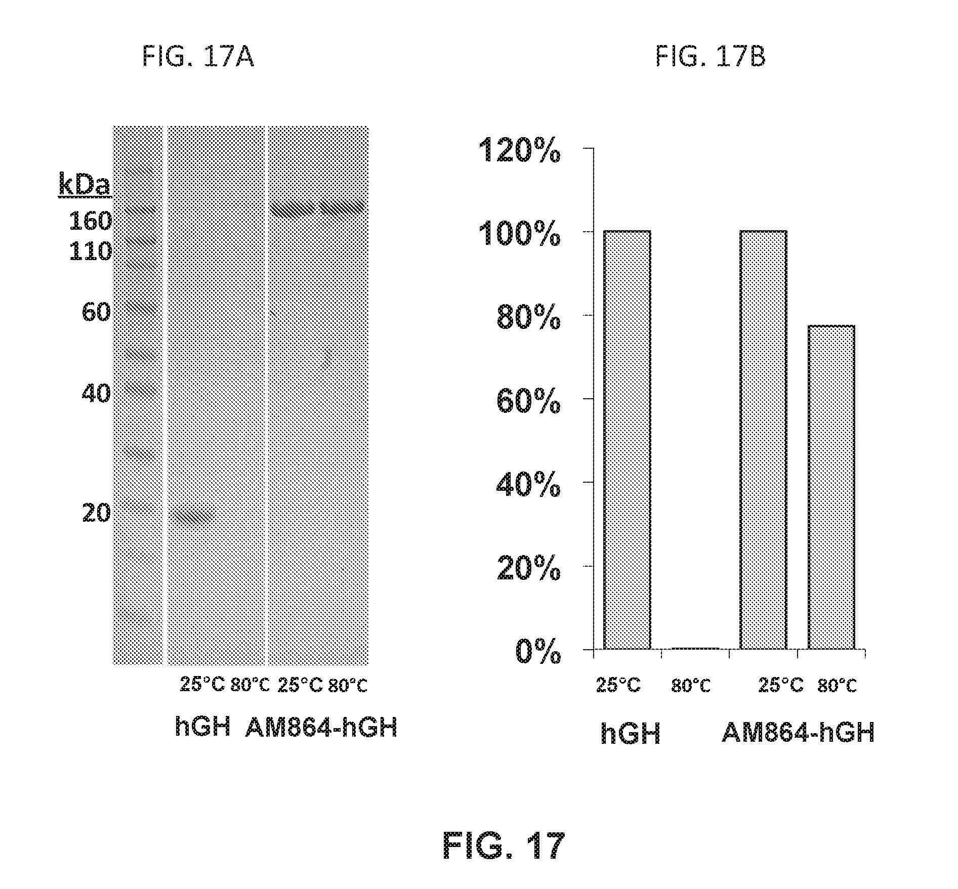 US20180161443A1 - Growth hormone polypeptides and methods of making