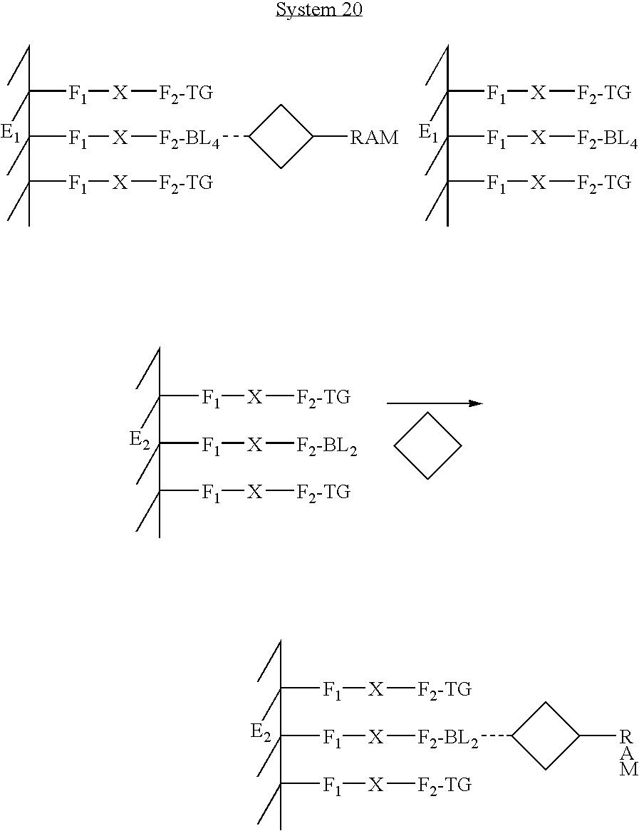 Figure US20080237061A1-20081002-C00020