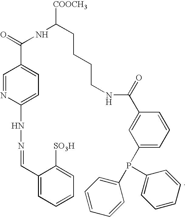 Figure US07317104-20080108-C00025