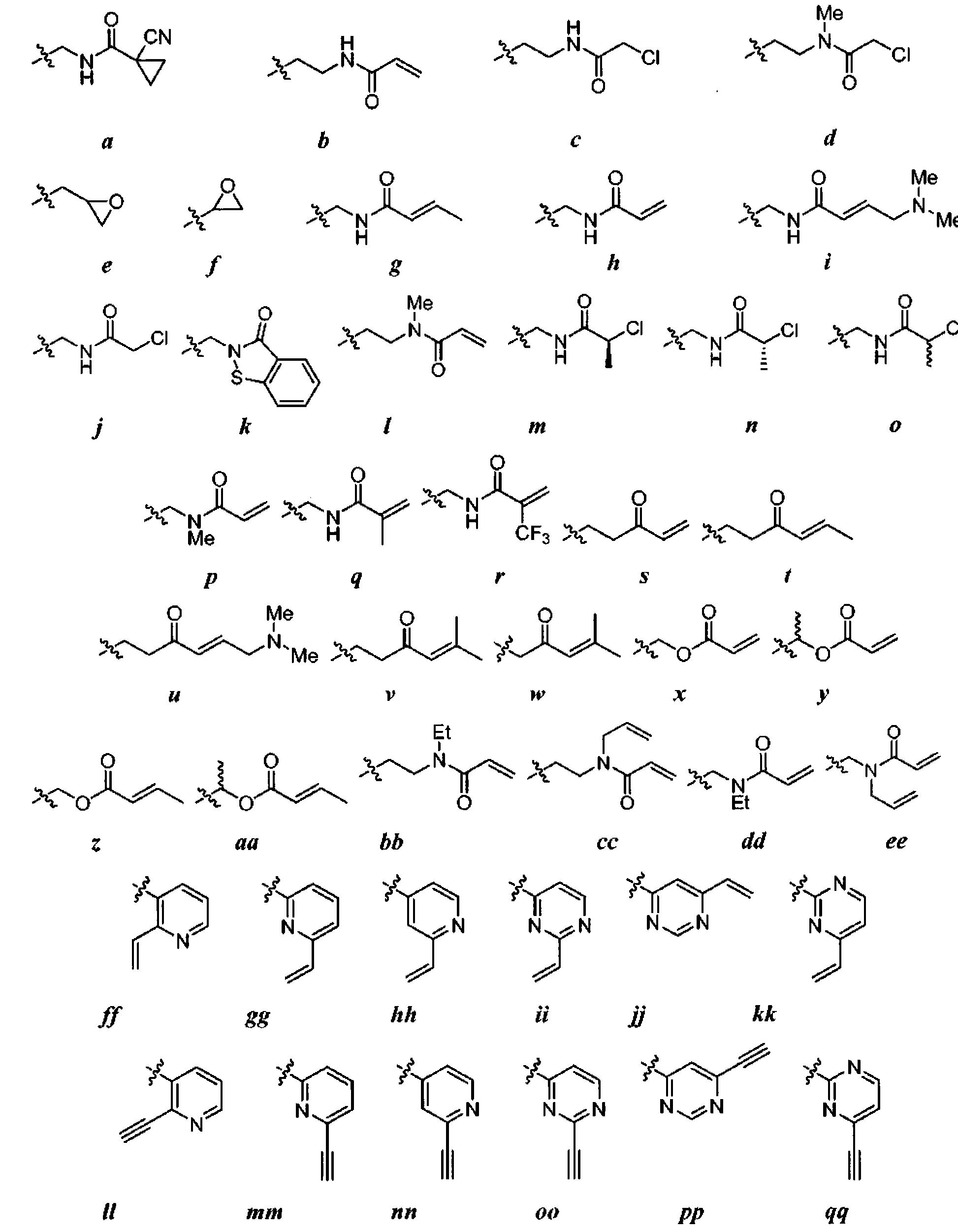 Figure CN101951770BD00731