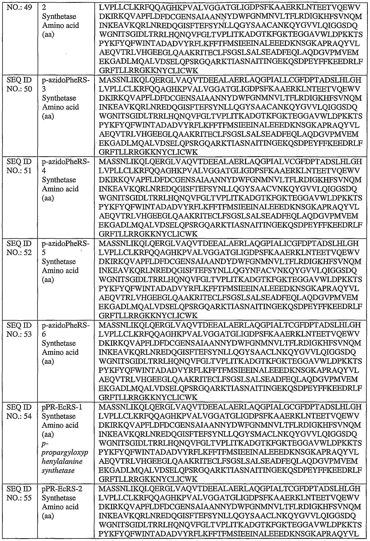WO2004094593A2 - Expanding the eukaryotic genetic code