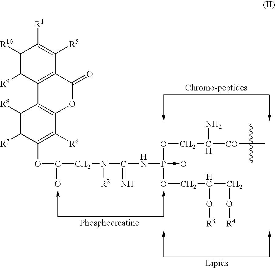 Figure US20050245434A1-20051103-C00006