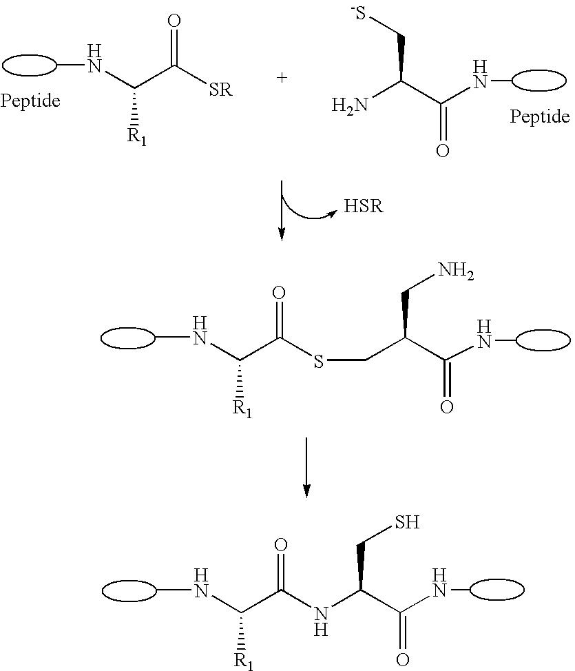 Figure US20060276658A1-20061207-C00009