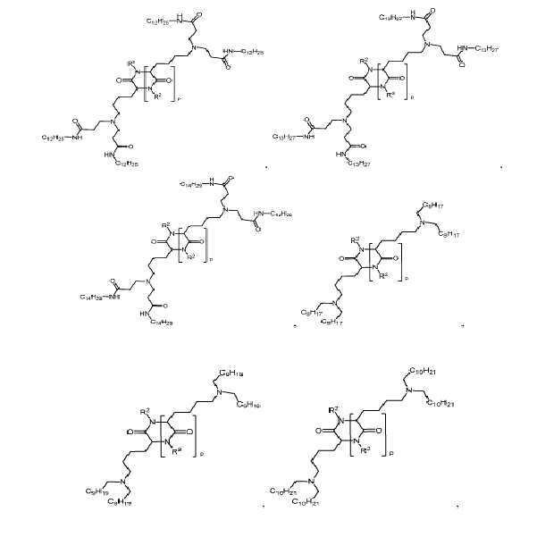 Figure pct00243
