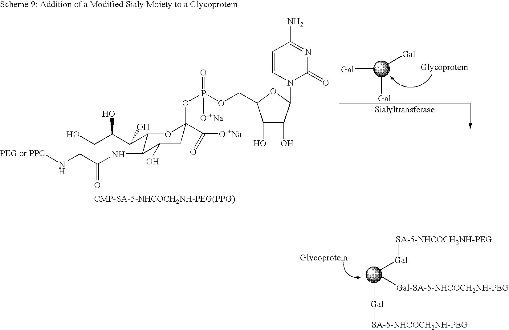 Figure US09187532-20151117-C00060