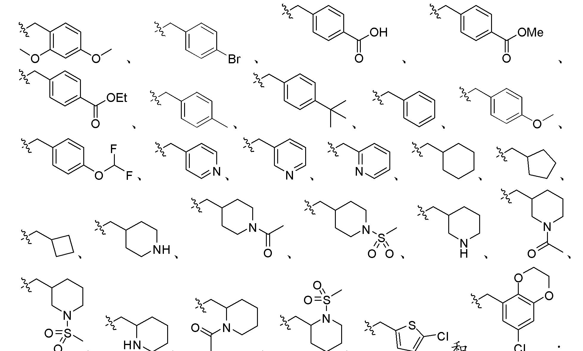 Figure CN102448458BD00211