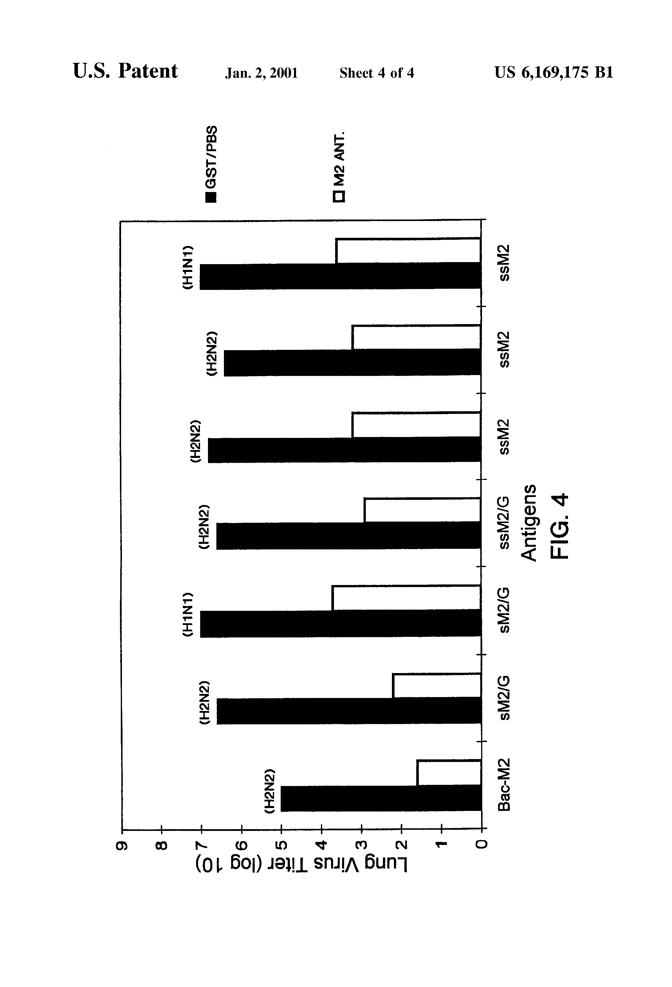 US6169175B1 Preparation and use of recombinant influenza A