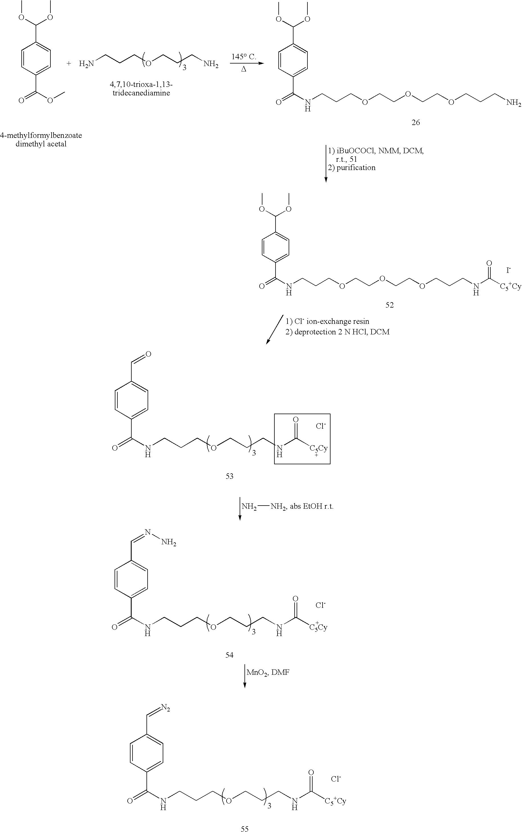 Figure US07060441-20060613-C00046