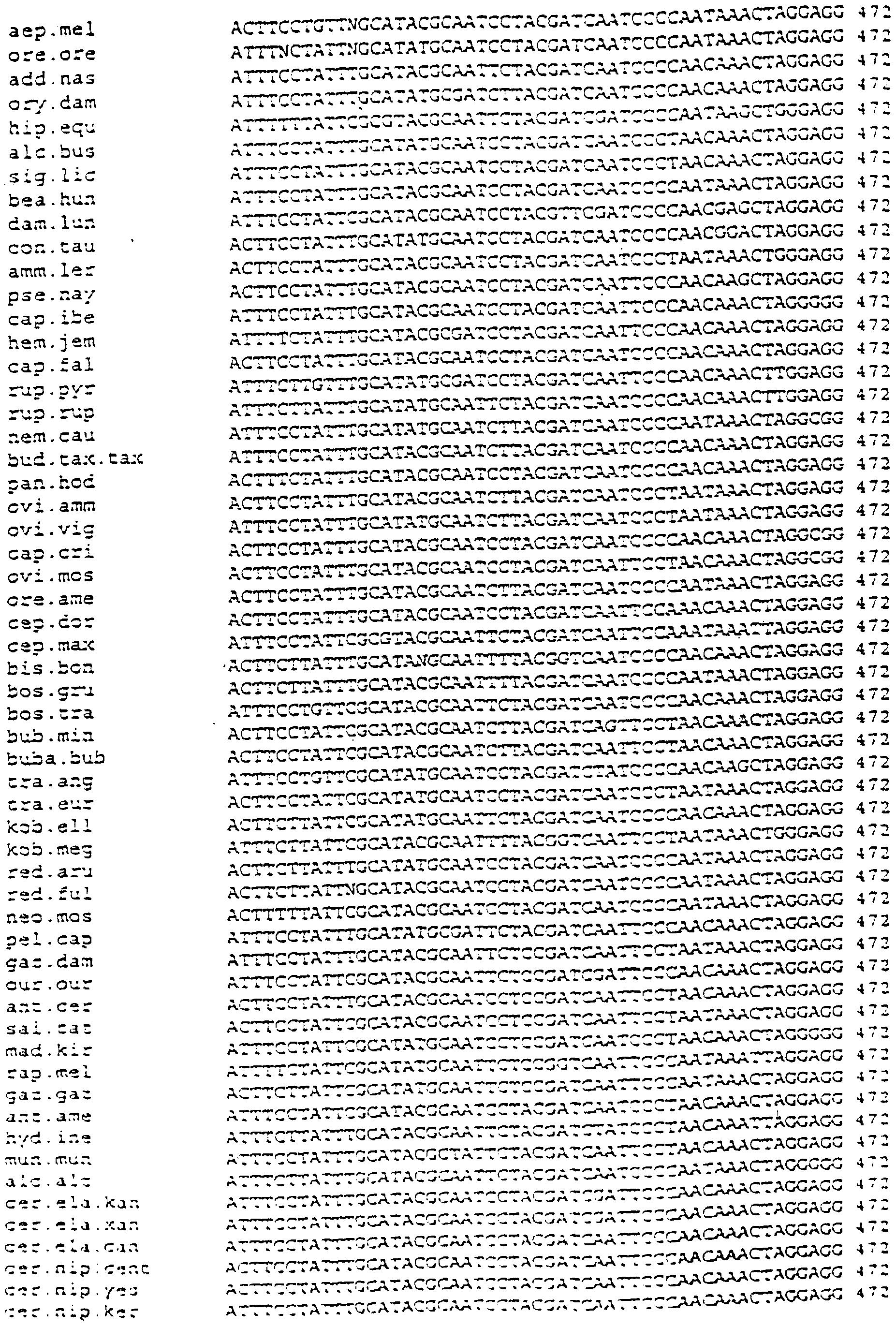 AME CUS-200 Windows 8 X64