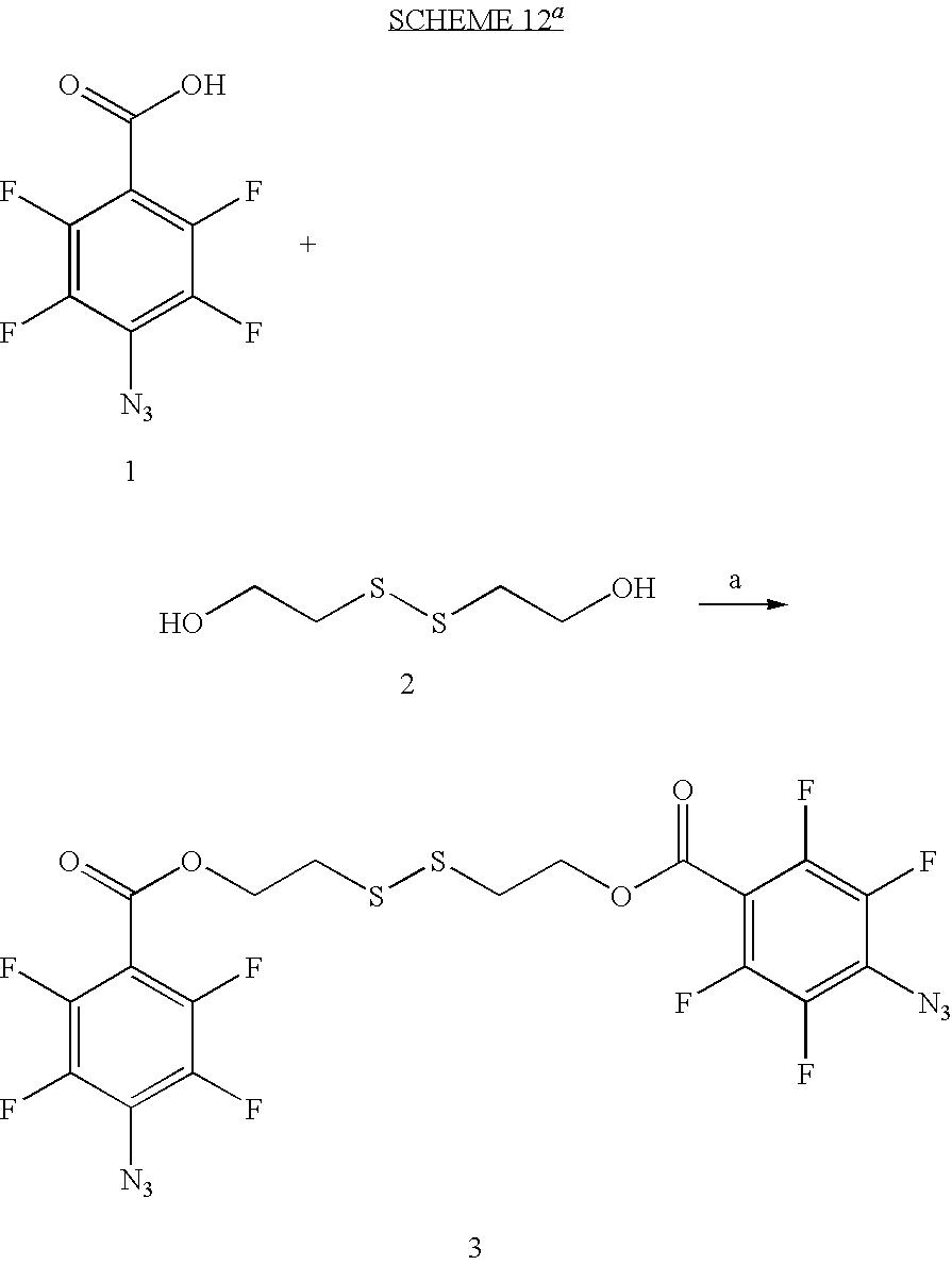 Figure US20100028559A1-20100204-C00017